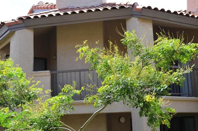 9445 N 94TH Place #215, Scottsdale, AZ 85258 (MLS #6222231) :: Sheli Stoddart Team | M.A.Z. Realty Professionals