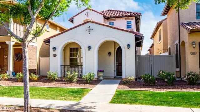 3878 E Gideon Way, Gilbert, AZ 85296 (MLS #6222236) :: Yost Realty Group at RE/MAX Casa Grande