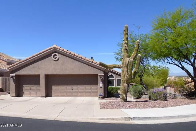 1736 E Waltann Lane, Phoenix, AZ 85022 (MLS #6222241) :: The Property Partners at eXp Realty