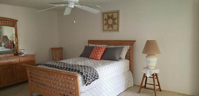 11615 S Mohave Street, Phoenix, AZ 85044 (MLS #6222243) :: Sheli Stoddart Team | M.A.Z. Realty Professionals