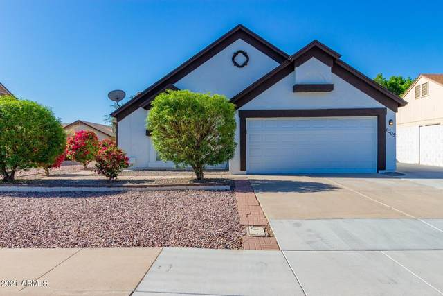 6305 W Ivanhoe Street, Chandler, AZ 85226 (MLS #6222260) :: Yost Realty Group at RE/MAX Casa Grande