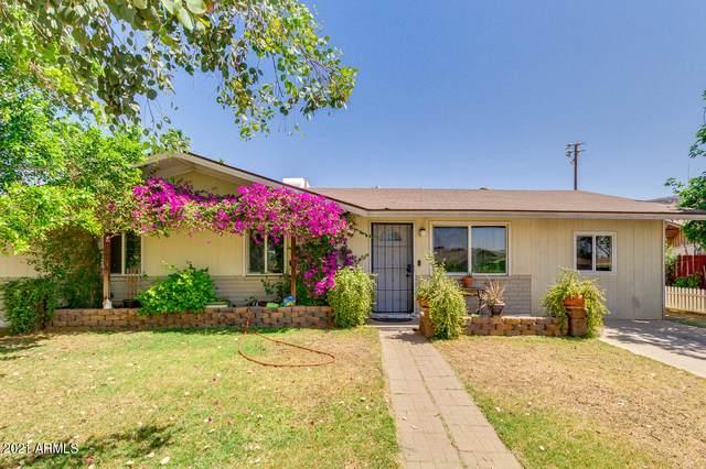 2202 W Columbine Drive, Phoenix, AZ 85029 (MLS #6222274) :: Yost Realty Group at RE/MAX Casa Grande