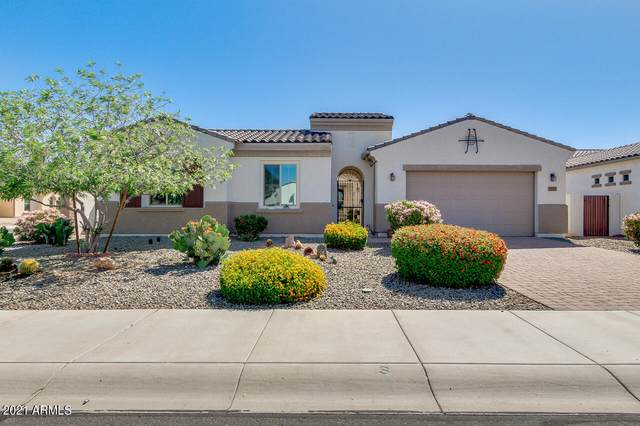 5277 S Loback Lane, Gilbert, AZ 85298 (MLS #6222277) :: Yost Realty Group at RE/MAX Casa Grande