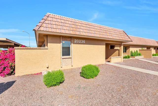 20236 N 6TH Drive #4, Phoenix, AZ 85027 (MLS #6222289) :: The Daniel Montez Real Estate Group
