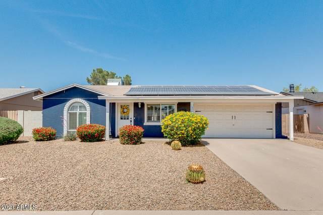 3708 E Nisbet Road, Phoenix, AZ 85032 (MLS #6222308) :: Sheli Stoddart Team | M.A.Z. Realty Professionals