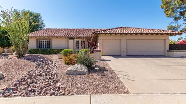 7209 W Columbine Drive, Peoria, AZ 85381 (MLS #6222320) :: Yost Realty Group at RE/MAX Casa Grande