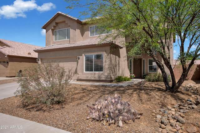 4446 E Cottonwood Lane, Phoenix, AZ 85048 (MLS #6222325) :: Yost Realty Group at RE/MAX Casa Grande