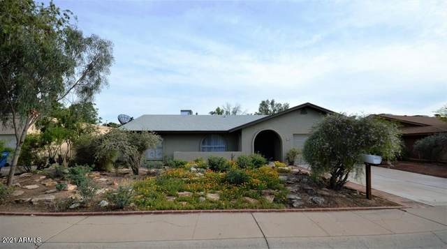 3939 W Sharon Avenue, Phoenix, AZ 85029 (MLS #6222373) :: Sheli Stoddart Team | M.A.Z. Realty Professionals