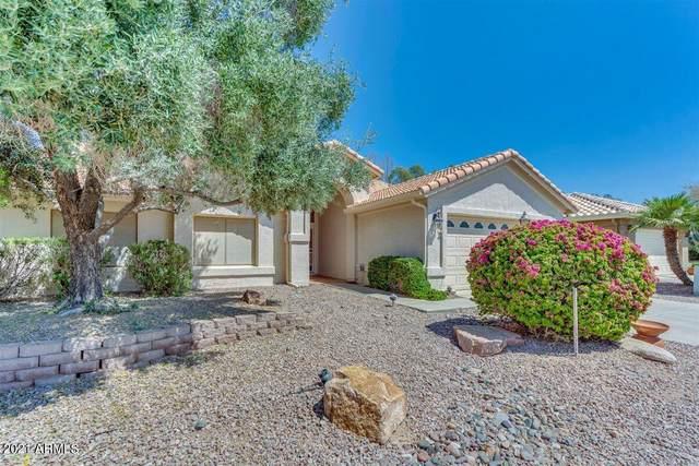 8916 E Copper Drive, Sun Lakes, AZ 85248 (MLS #6222414) :: The Copa Team | The Maricopa Real Estate Company