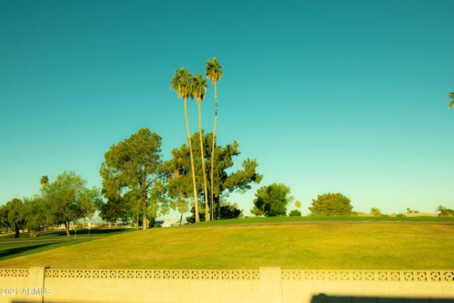14606 N Bolivar Drive, Sun City, AZ 85351 (MLS #6222491) :: Scott Gaertner Group