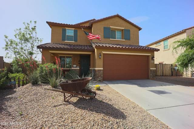 41734 N Cielito Linda Way, San Tan Valley, AZ 85140 (MLS #6222540) :: Arizona 1 Real Estate Team