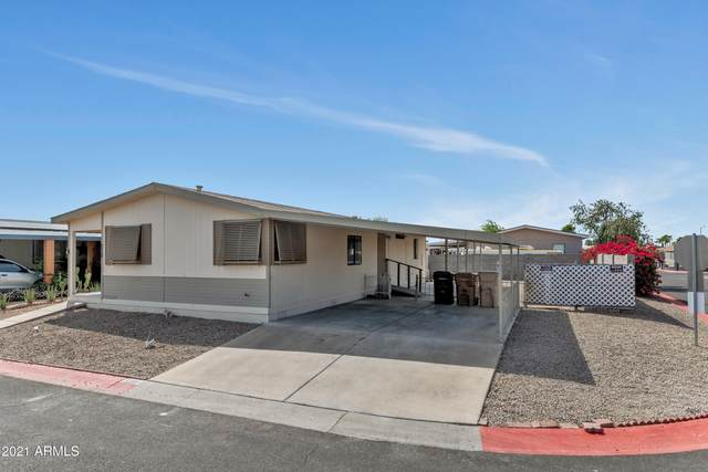8601 N 103RD Avenue #151, Peoria, AZ 85345 (MLS #6222544) :: The Carin Nguyen Team