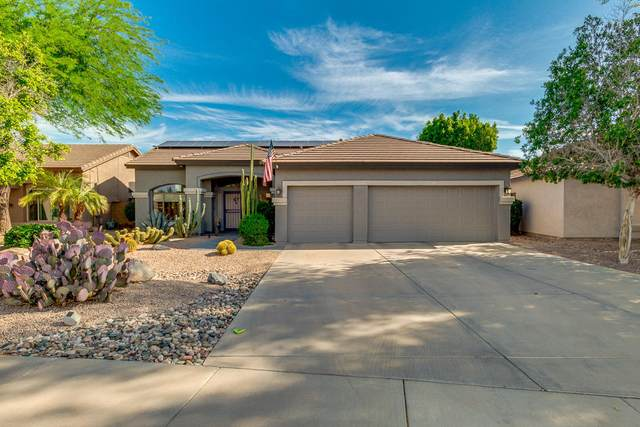 1027 S Western Skies Drive, Gilbert, AZ 85296 (MLS #6222549) :: The Everest Team at eXp Realty