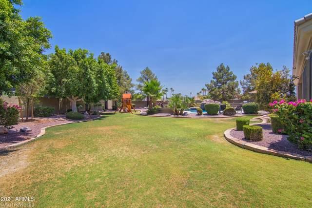 23645 N 55TH Drive, Glendale, AZ 85310 (MLS #6222557) :: Kepple Real Estate Group