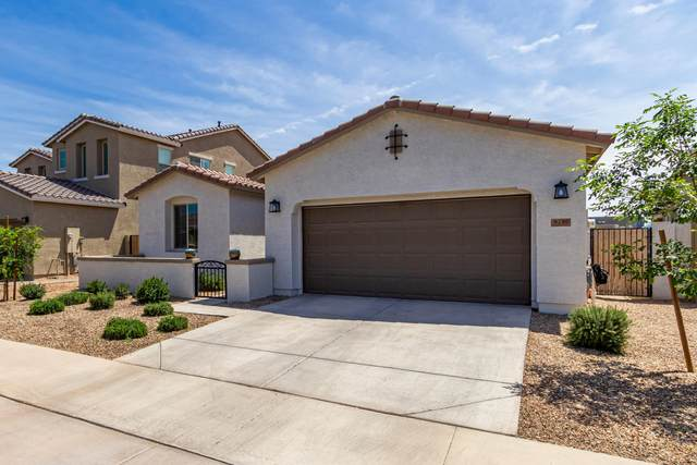 9739 E Torino Avenue, Mesa, AZ 85212 (MLS #6222579) :: The Everest Team at eXp Realty