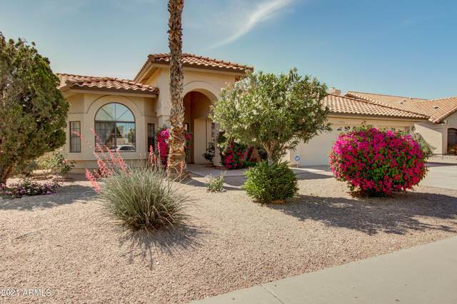 15426 N 62ND Street, Scottsdale, AZ 85254 (MLS #6222596) :: The Everest Team at eXp Realty