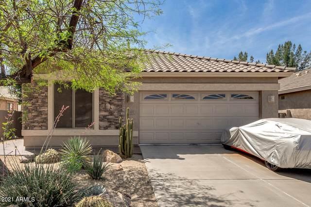 1107 E Temple Court, Gilbert, AZ 85296 (MLS #6222598) :: Yost Realty Group at RE/MAX Casa Grande