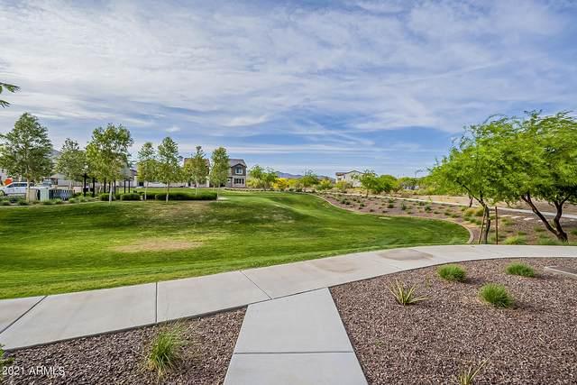 1743 N 208TH Avenue, Buckeye, AZ 85396 (MLS #6222635) :: Yost Realty Group at RE/MAX Casa Grande