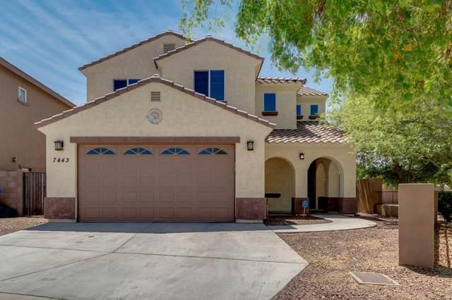 7443 W Wolf Street, Phoenix, AZ 85033 (MLS #6222641) :: Yost Realty Group at RE/MAX Casa Grande