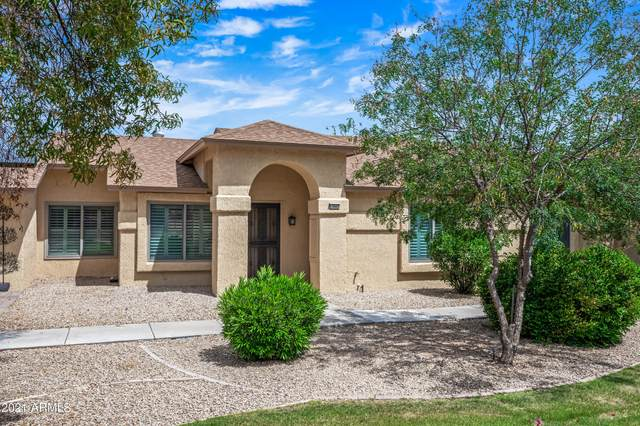 13607 W Countryside Drive, Sun City West, AZ 85375 (MLS #6222669) :: Sheli Stoddart Team | M.A.Z. Realty Professionals