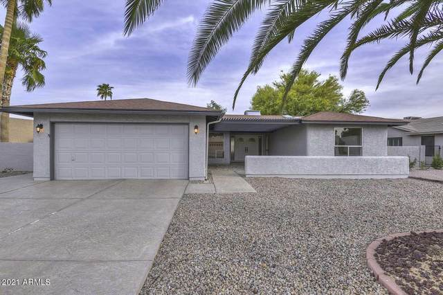 9911 E Watford Way, Sun Lakes, AZ 85248 (MLS #6222670) :: Dave Fernandez Team | HomeSmart