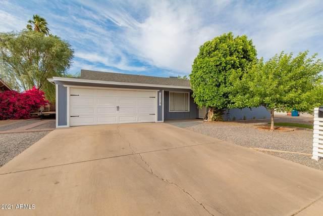 3316 W Mountain View Road, Phoenix, AZ 85051 (MLS #6222685) :: Dave Fernandez Team   HomeSmart