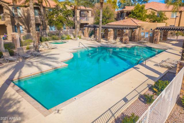 2155 N Grace Boulevard #219, Chandler, AZ 85225 (MLS #6222689) :: Klaus Team Real Estate Solutions