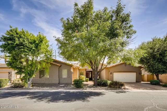 2181 W Marlin Drive, Chandler, AZ 85286 (MLS #6222697) :: Yost Realty Group at RE/MAX Casa Grande
