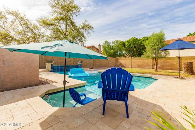 16416 S 42ND Place, Phoenix, AZ 85048 (MLS #6222707) :: CANAM Realty Group