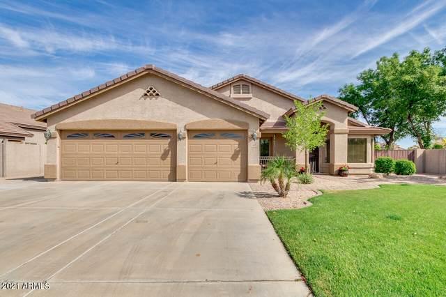 1470 E Carla Vista Drive, Gilbert, AZ 85295 (MLS #6222728) :: Balboa Realty