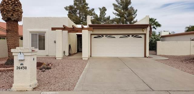 26430 S Greencastle Drive, Sun Lakes, AZ 85248 (MLS #6222742) :: Kepple Real Estate Group