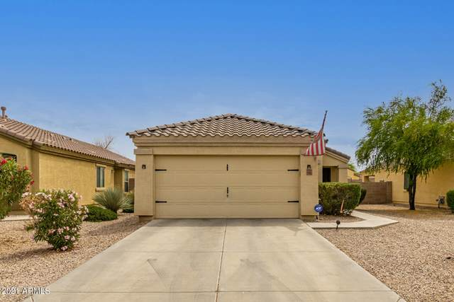 1353 E Daniella Drive, San Tan Valley, AZ 85140 (MLS #6222764) :: The Property Partners at eXp Realty