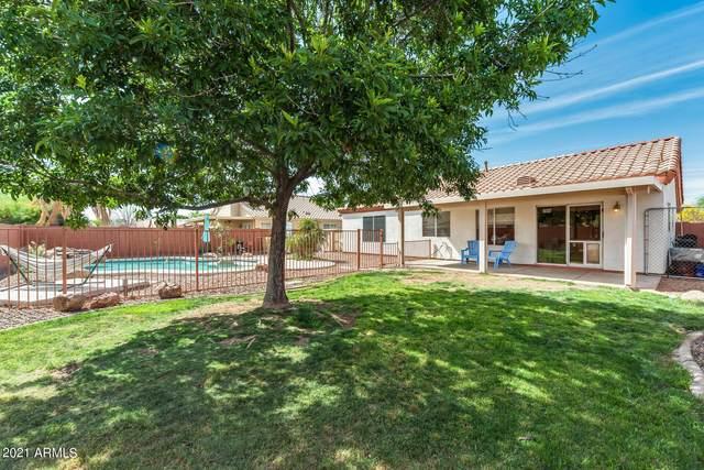 10315 W Luke Avenue, Glendale, AZ 85307 (MLS #6222804) :: Hurtado Homes Group