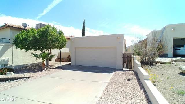 1631 E Villa Maria Drive, Phoenix, AZ 85022 (MLS #6222810) :: Yost Realty Group at RE/MAX Casa Grande