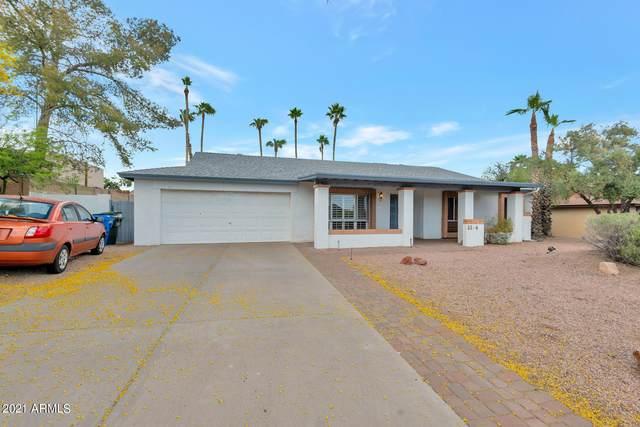 2344 E Desert Cove Avenue, Phoenix, AZ 85028 (MLS #6222816) :: My Home Group