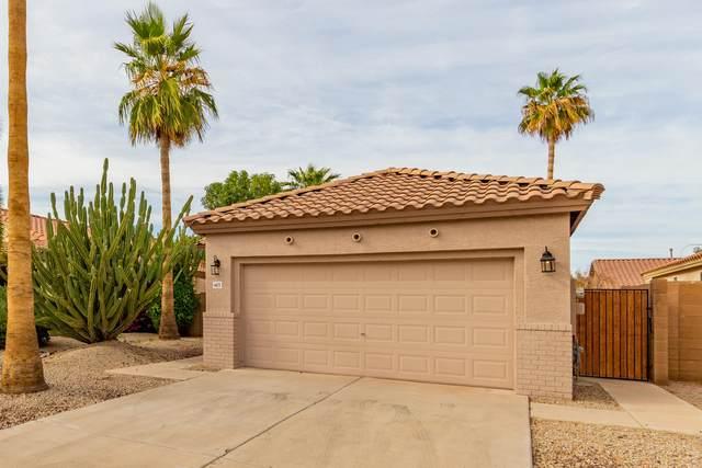 6672 W Ivanhoe Street, Chandler, AZ 85226 (MLS #6222819) :: Yost Realty Group at RE/MAX Casa Grande