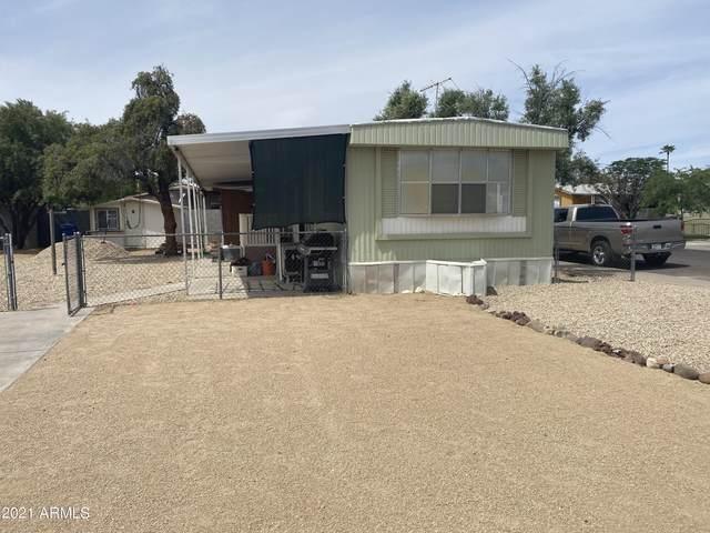 16434 N 29TH Way, Phoenix, AZ 85032 (MLS #6222830) :: Yost Realty Group at RE/MAX Casa Grande