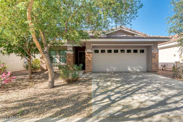 4203 E Sandy Way, Gilbert, AZ 85297 (MLS #6222851) :: Balboa Realty