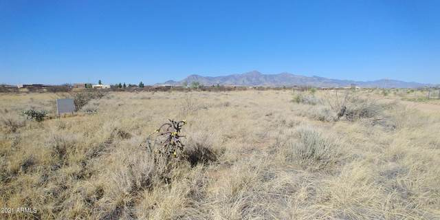 Lot 6 Cloudcroft, Hereford, AZ 85615 (MLS #6222866) :: Sheli Stoddart Team | M.A.Z. Realty Professionals