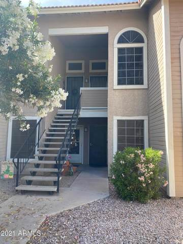 5230 E Brown Road #268, Mesa, AZ 85205 (MLS #6222907) :: Hurtado Homes Group
