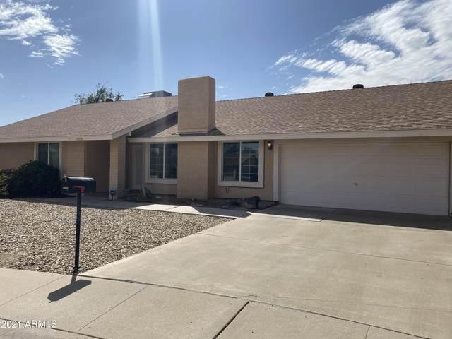 15234 N 23RD Drive, Phoenix, AZ 85023 (MLS #6222971) :: Yost Realty Group at RE/MAX Casa Grande