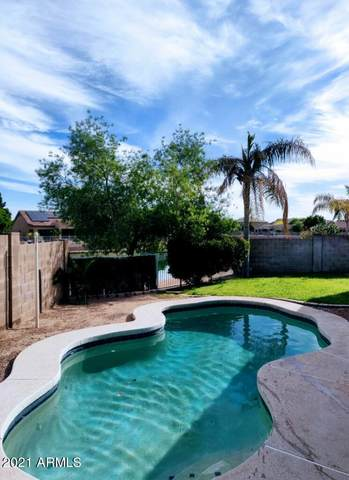 10910 W Palm Lane, Avondale, AZ 85323 (MLS #6222991) :: Nate Martinez Team