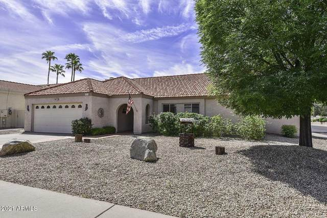 9003 E Windrose Drive, Scottsdale, AZ 85260 (MLS #6223011) :: Executive Realty Advisors