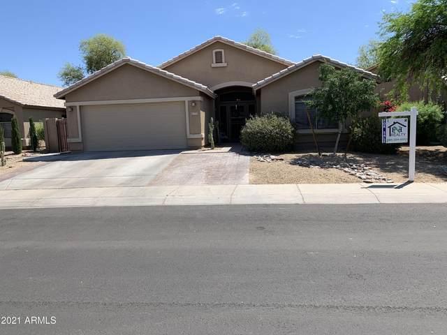 7775 N 51ST Drive, Glendale, AZ 85301 (MLS #6223044) :: Yost Realty Group at RE/MAX Casa Grande