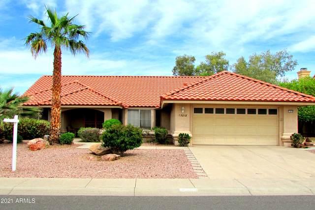 13818 W Sky Hawk Drive, Sun City West, AZ 85375 (MLS #6223131) :: Kepple Real Estate Group