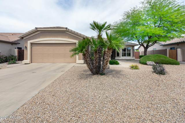 3614 E County Down Drive, Chandler, AZ 85249 (MLS #6223175) :: Openshaw Real Estate Group in partnership with The Jesse Herfel Real Estate Group