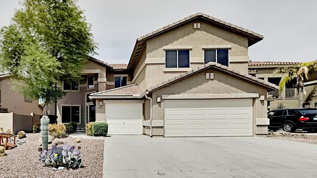 44370 W Yucca Lane, Maricopa, AZ 85138 (MLS #6223186) :: Klaus Team Real Estate Solutions