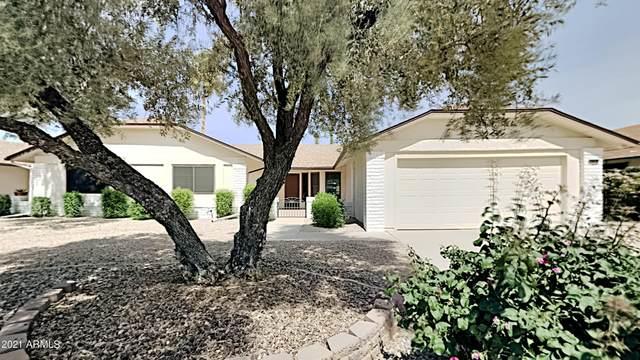 20419 N 135TH Avenue, Sun City West, AZ 85375 (MLS #6223188) :: Kepple Real Estate Group