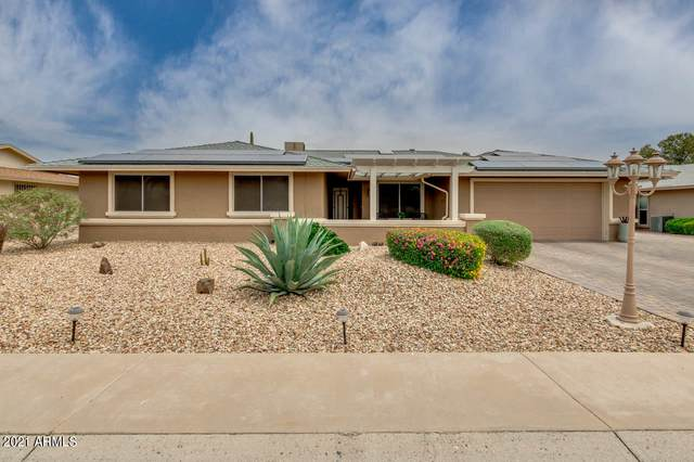 13813 N 97TH Avenue, Sun City, AZ 85351 (MLS #6223215) :: Keller Williams Realty Phoenix