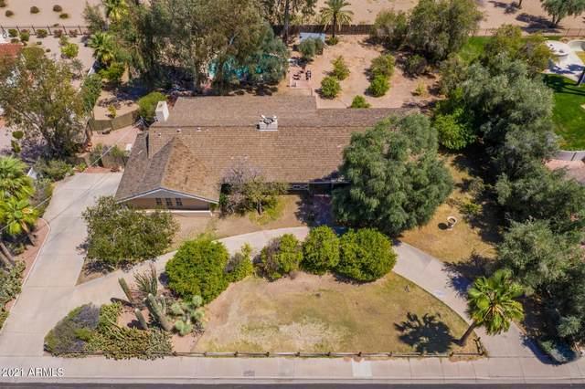4515 N 64TH Street, Scottsdale, AZ 85251 (MLS #6223233) :: Yost Realty Group at RE/MAX Casa Grande